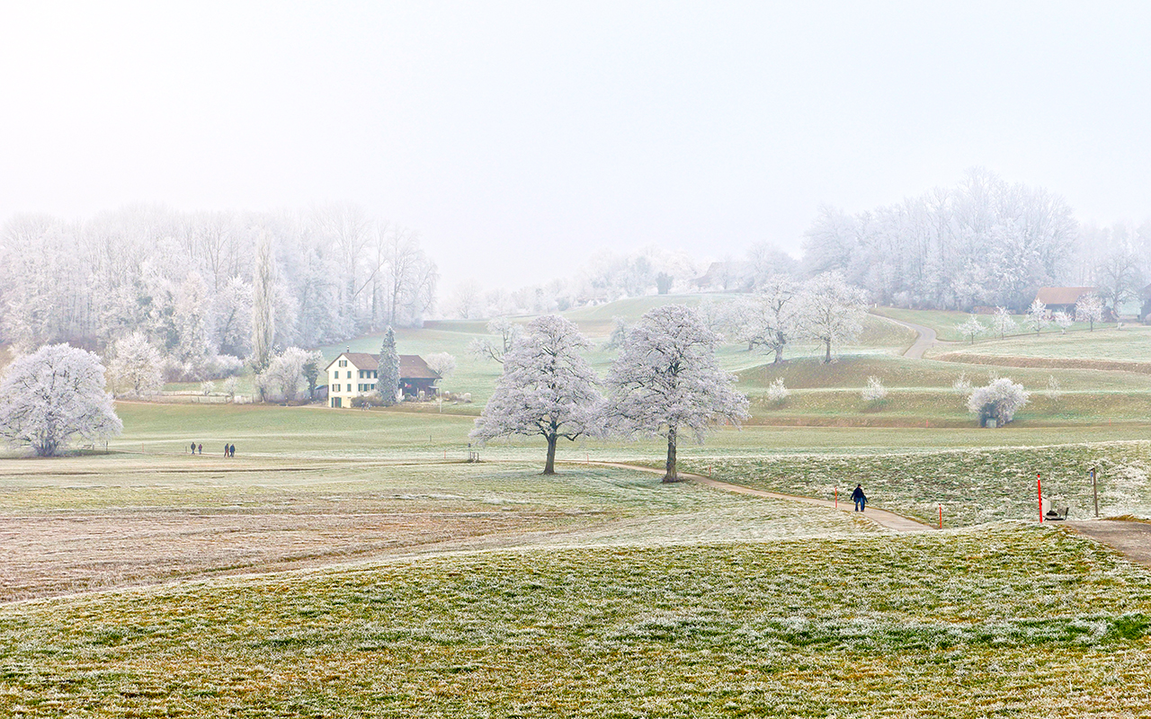 Lützelsee farmland during Winter