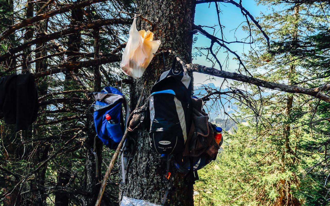 Nature coat hanger.
