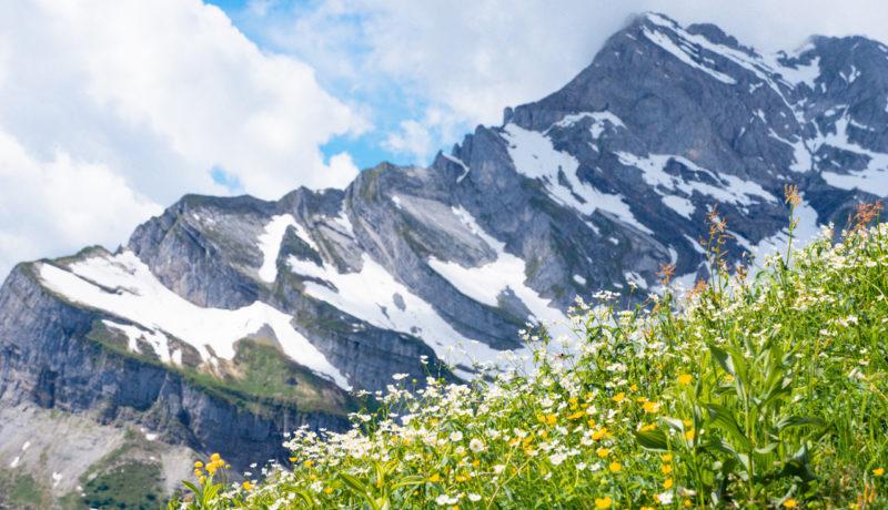 braunwald-glarus-2