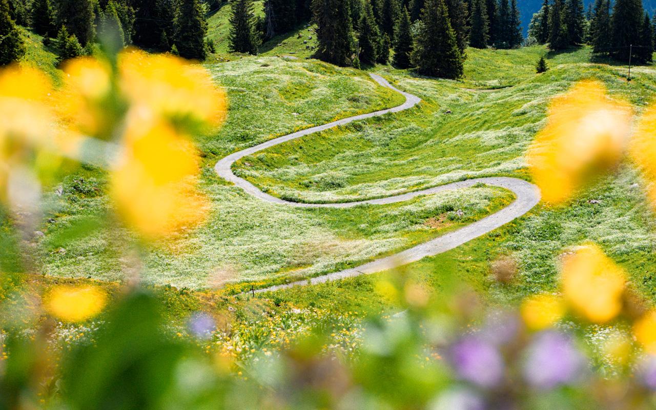 braunwald-glarus-8
